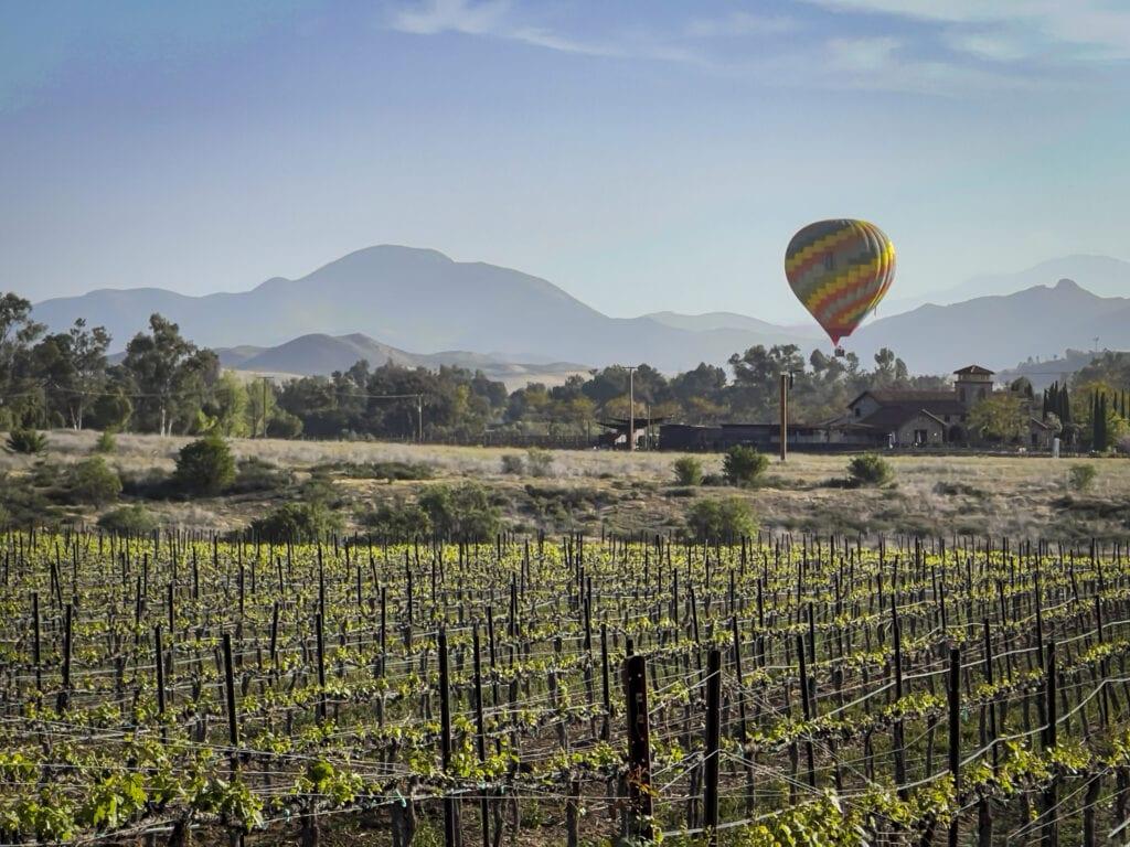 Hot air ballooning across Temecula Valley vineyards.